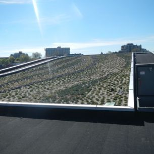 Green roof on Harbor Air Seaplane - A good view of the green roof